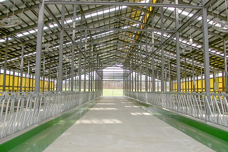 家畜改良センター岩手牧場育成牛舎新築工事
